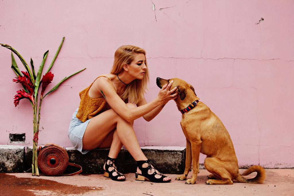 Hiptipico, Ethical fashion, dog, ethical dog collar, travel blog, guatemala travel, female travel blog