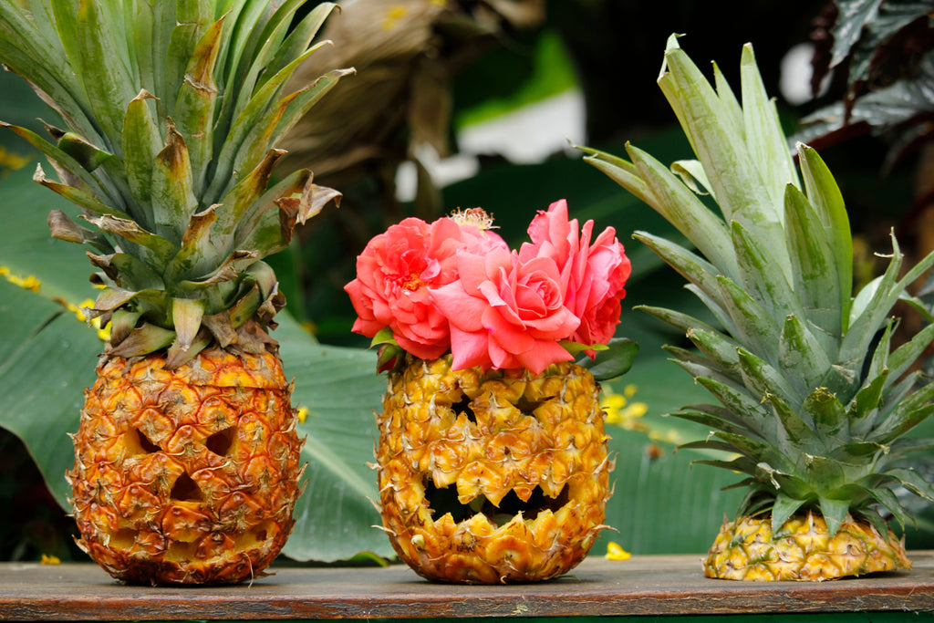alyssaya blog, hiptipico travel blogger, pineapple carving, pineapple pumpkin, pineapple pinterest, pineapple jack o lantern