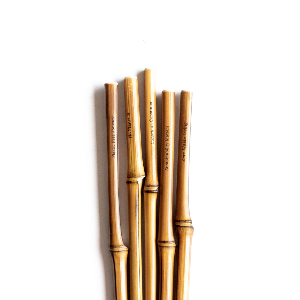 Bamboo Straw - Eco Warrior Bundle
