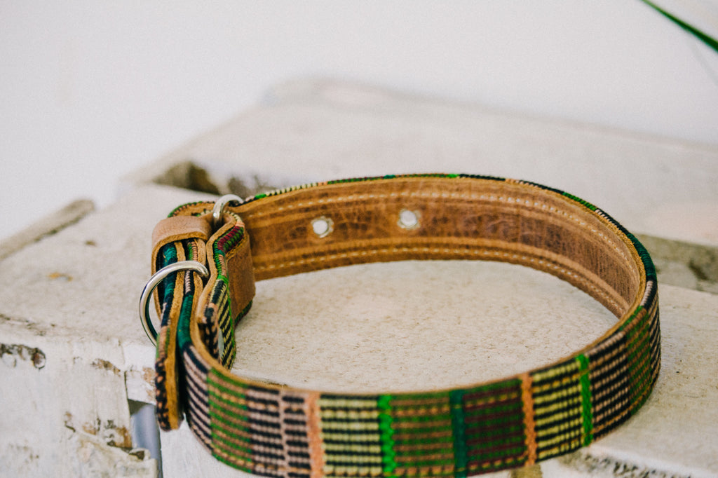 Dog Collar - No. 03 Tierra