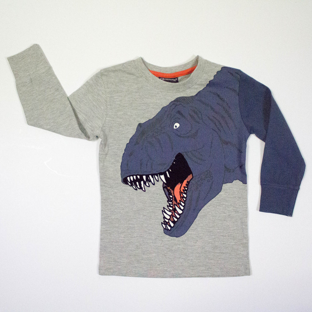 toddler dinosaur long sleeve t-shirt