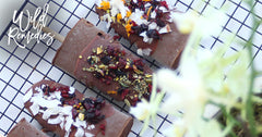 Vegan Fudgsicle Recipe + Chaga = Chagasicles
