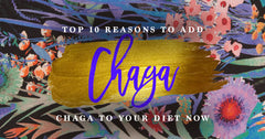 Top 10 Reasons to Add Chaga To Your Diet Now