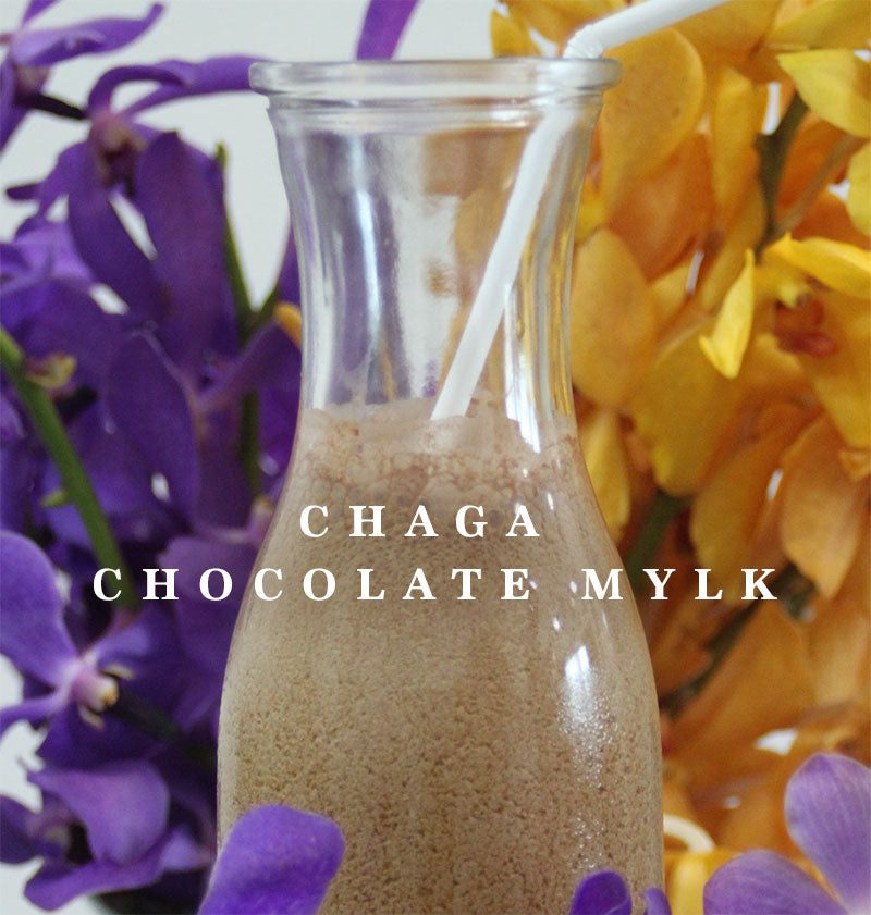 Chaga chocolate mylk recipe