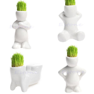 F85 Free Shipping 4 shape Choose DIY Mini Novel Bonsai Grass Doll Hair White Lazy Man Plant Garden