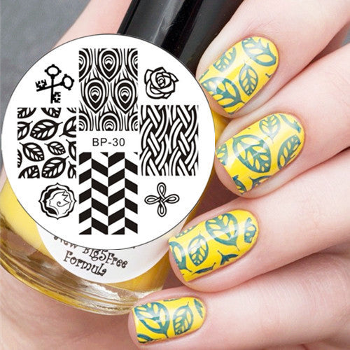 Feather & Leaves Pattern Nail Art Stamp Template Image Plate BORN PRETTY BP30