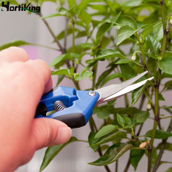 Hortiking Garden Pruner Professional Greenhouse Scissors Garden Plant Tools Precision Curved Blade Pruner