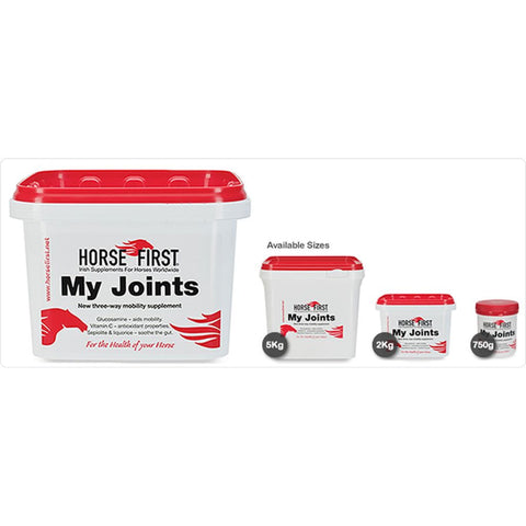 My Joints