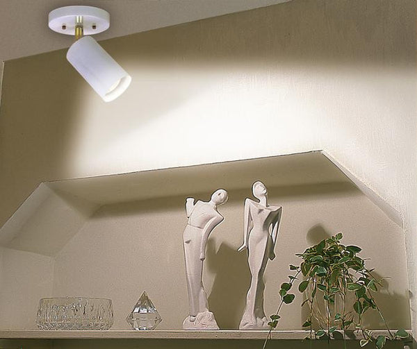 One-Light Indoor Multi-Directional Flush-Mount Ceiling Fixture, White Finish - Lighting Getz
