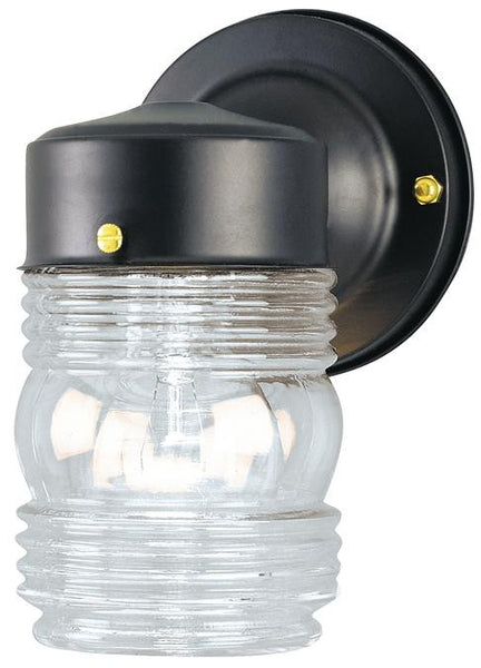 One-Light Outdoor Wall Lantern, Matte Black Finish on Steel with Clear Glass - Lighting Getz