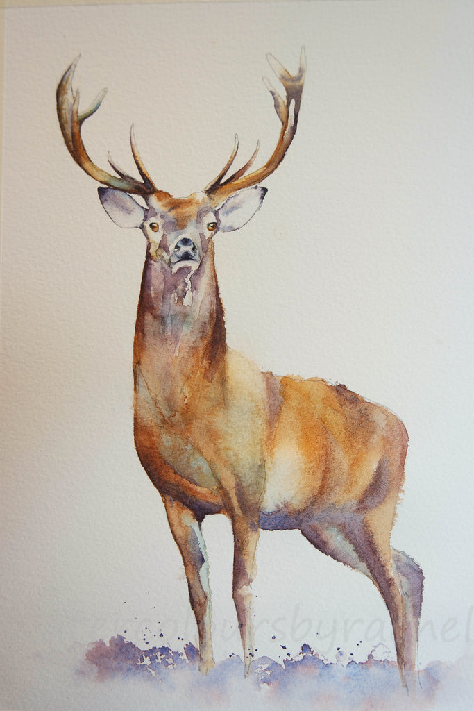 How to paint a stag in 5 easy steps.....