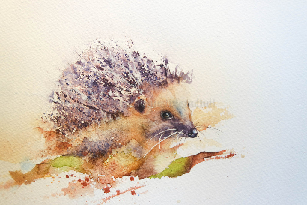 Seven steps to painting a hedgehog