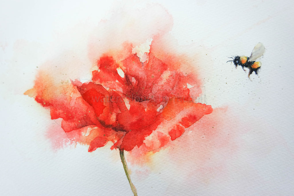 How to paint a splishy splashy poppy