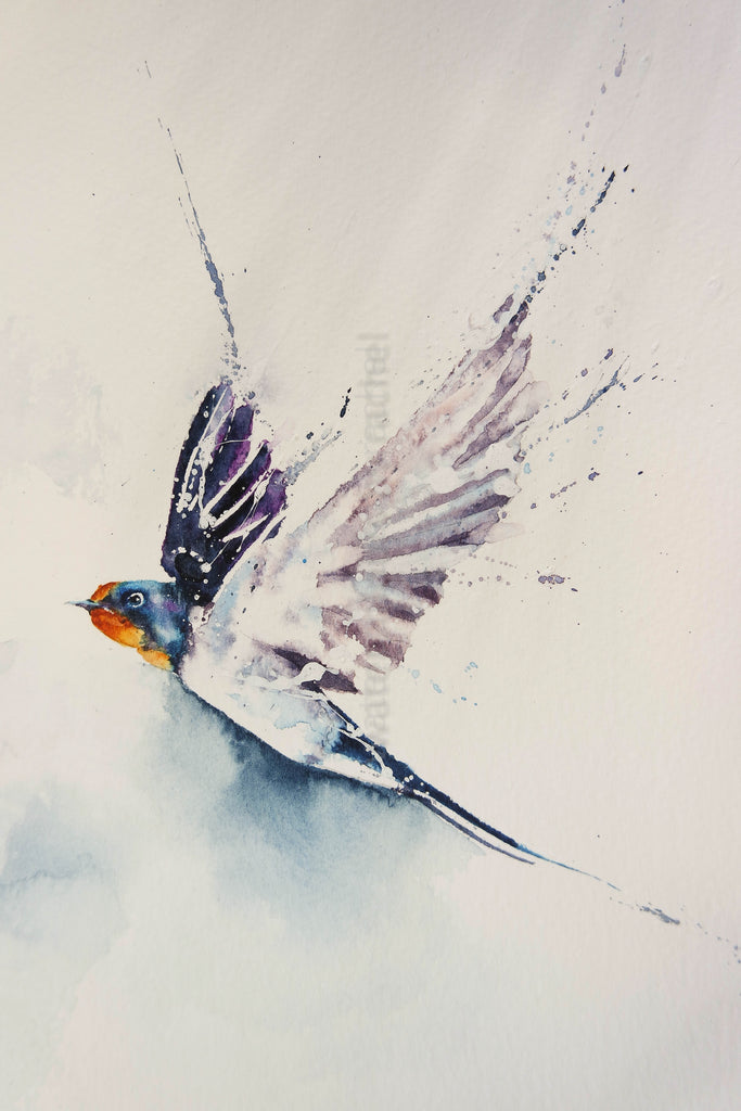 Painting a swallow