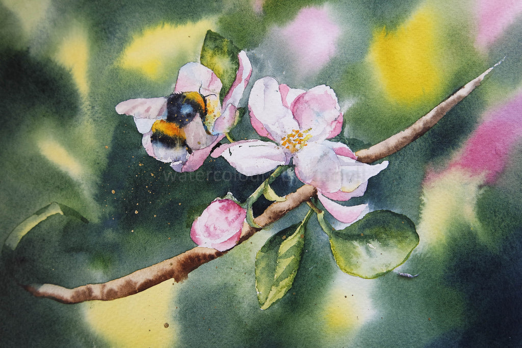 Background ....Apple Blossom