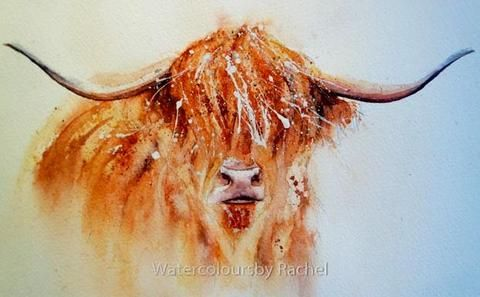How to paint a highland cow, and have some fun!
