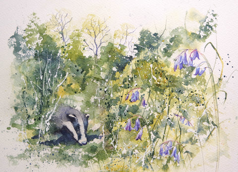 Bluebell Badger