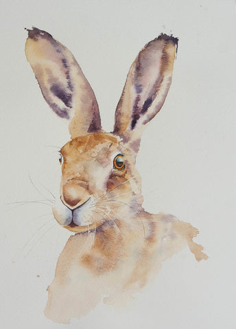 portrait of a hare (2)