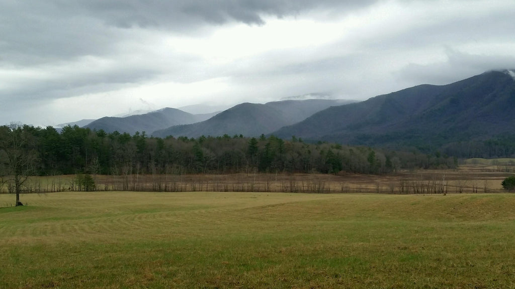 cades cove tn winter