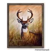 "Whitetail Deer Canvas Art Print - ""Backwoods Monarch"""