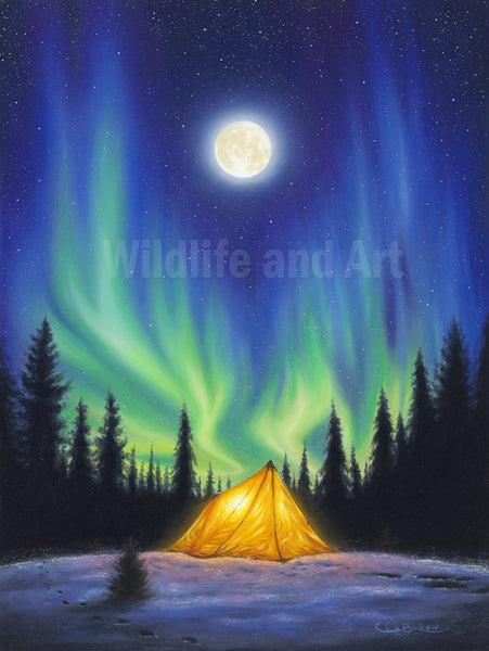 "Northern Lights Canvas Art Print - ""A Beautiful Life"" - art print - original art - Wildlife and Art by Chuck Black"