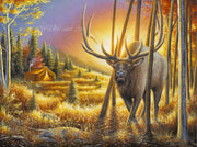 "Original Rocky Mountain Elk Oil painting - ""That One Moment"" 18x24 - art print - original art - Wildlife and Art by Chuck Black"