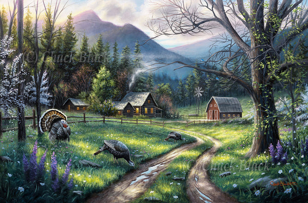 "Spring Turkeys Landscape Canvas Art Print - ""Bear Creek Ranch"""