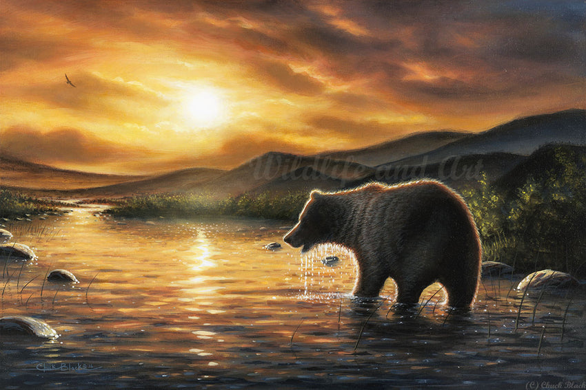 "Grizzly Bear Canvas Art Print - ""Persistence"" - art print - original art - Wildlife and Art by Chuck Black"