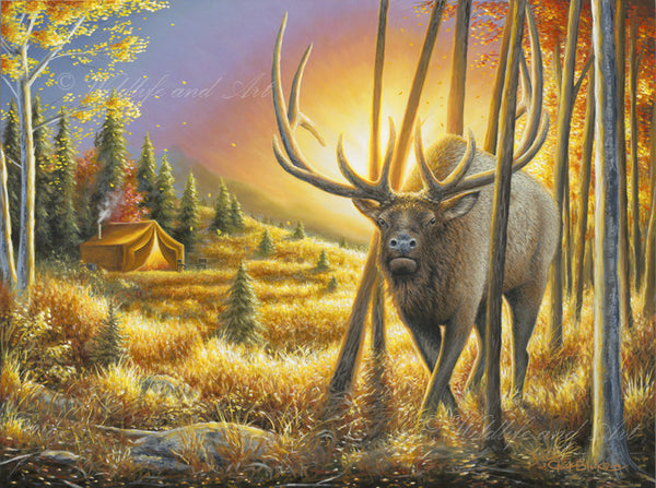 "Rocky Mountain Elk Limited Edition Print - ""That One Moment"" - art print - original art - Wildlife and Art by Chuck Black"