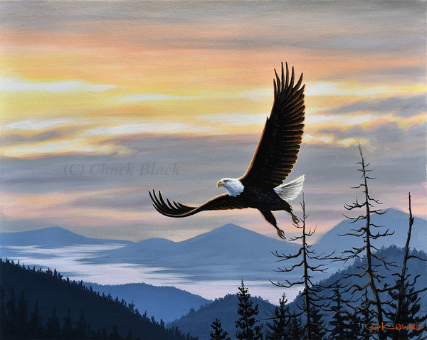 "Bald Eagle Canvas Wildlife Art Print - ""Rare Moments"""