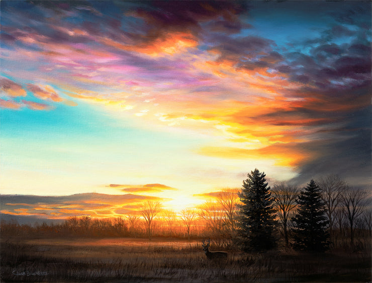 "Sunset Landscape Wildlife Art Print - ""Last Light"""