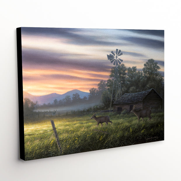 "Whitetail Deer Canvas Art Print - ""Late Summer"""