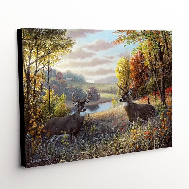 "Whitetail Deer Canvas Art Print - ""October Bliss"""