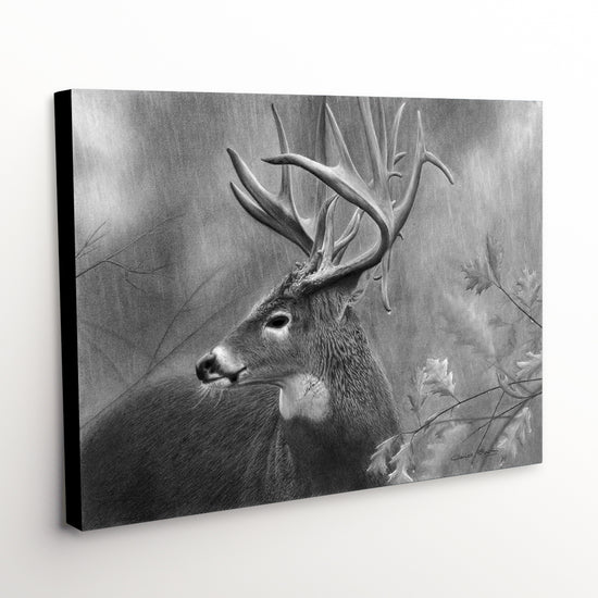 "Whitetail Buck Canvas Art Print - ""Rainy Days"""