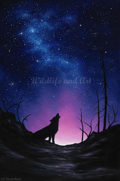 "Howling Wolf Canvas Art Print - ""Starry Night"" - art print - original art - Wildlife and Art by Chuck Black"