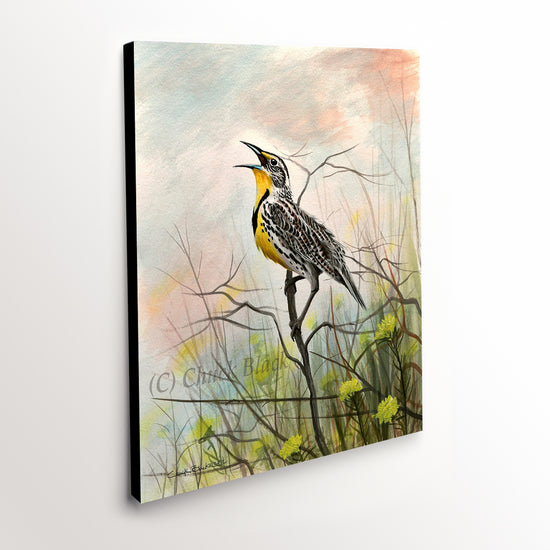 "Western Meadowlark Canvas Art Print - ""Western Song"""