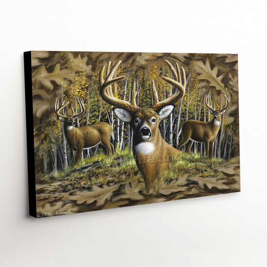 "Whitetail Deer Canvas Art Print - ""Whitetail Country"""