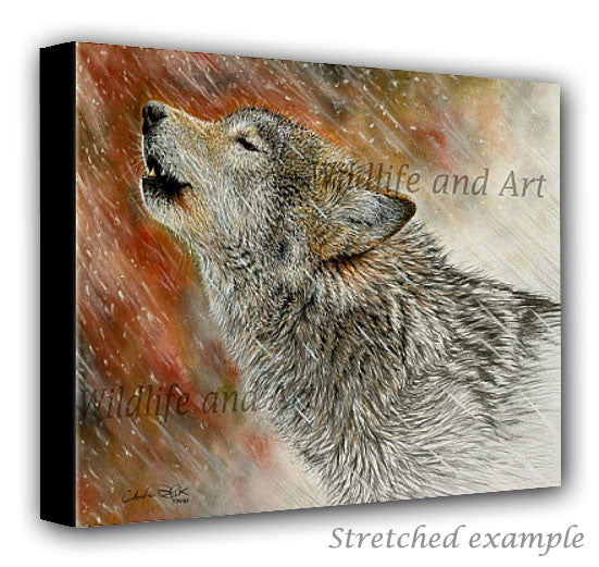 wildlife art canvas print - wolf decor - chuck black
