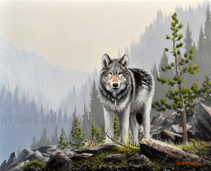 wolf wildlife art print