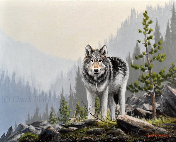 "Wolf Canvas Wildlife Art Print - ""A Wild Domain"""