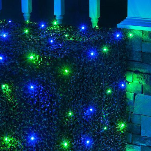 Led Christmas Light.Blue And Green 5mm Led Christmas Net Lights 100 Bulbs 4 X6