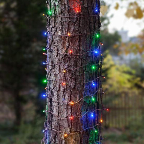 Multicolor - Trunk Wrap - 5mm LED Lights - 100 Bulbs - 2'x6' - Brown Wire
