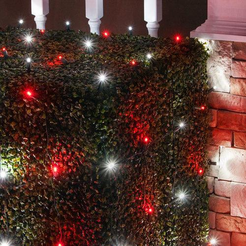 Red And White Christmas Lights.Red And Cool White 5mm Led Christmas Net Lights 100 Bulbs 4 X6