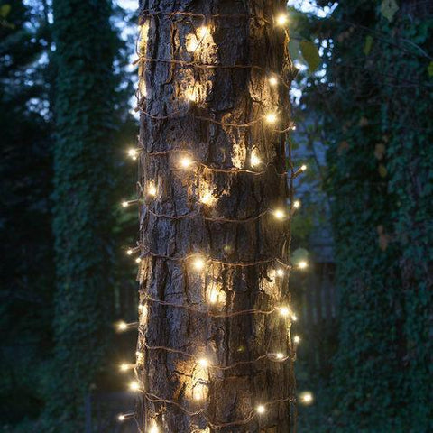 Warm White - Trunk Wrap - 5mm LED Lights - 100 Bulbs - 2'x6' - Brown Wire