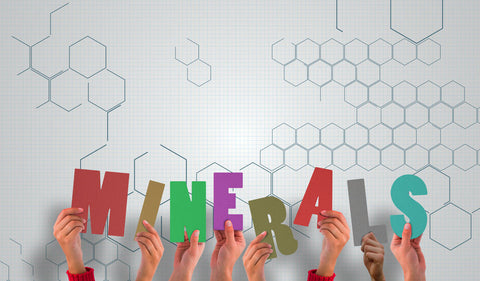 Minerals are critical to Athletic Performance