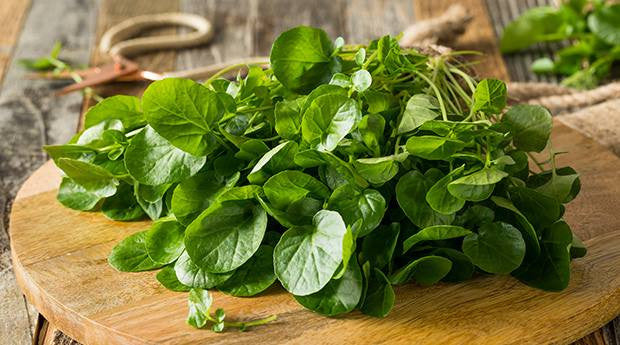 WATERCRESS - THE FORGOTTEN SUPERFOOD