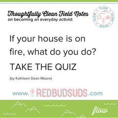 If Your House Was On Fire