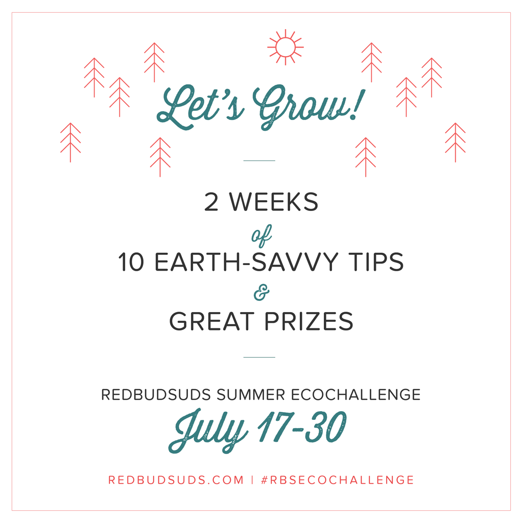 Join our summer EcoChallenge: GROW!