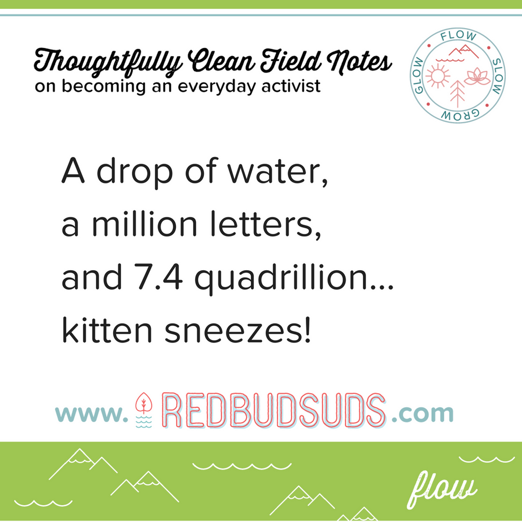Water Drops and Kitten Sneezes