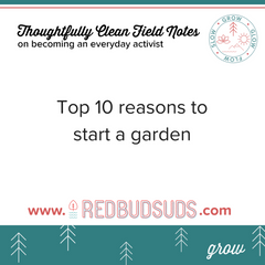 Top 10 Reasons to Start a Garden